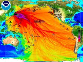 Fukushima effects
